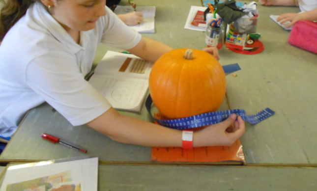 Measure the circumference of your pumpkin